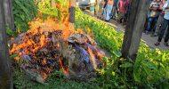 মৌলভীবাজারে কারেন্ট জাল জব্দ, সশ্রম কারাদন্ডসহ জরিমানা